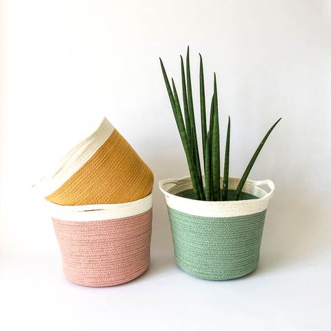 Twig Plants and Pots - Herb concrete indoor plant pot