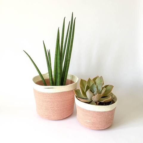 Twig Plants and Pots - Pixie concrete indoor plant pot
