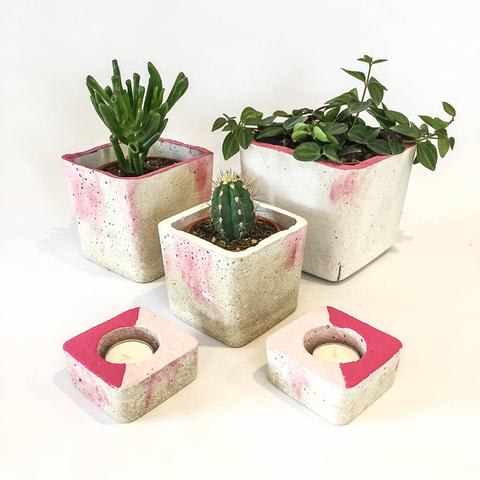 Twig Plants and Pots - Raspberry Ripple concrete indoor plant pot