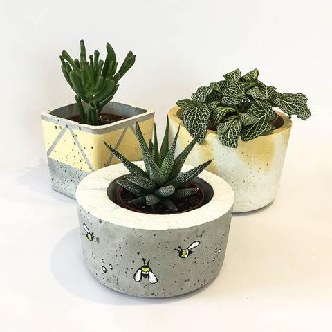 Twig Plants and Pots - Bee concrete indoor plant pot