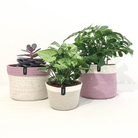 Cotton Pot - Unicorn
