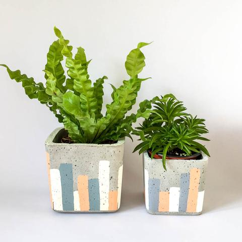Twig Plants and Pots - Urban Sunset concrete indoor plant pot