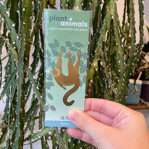 Plant Animals - Lemur