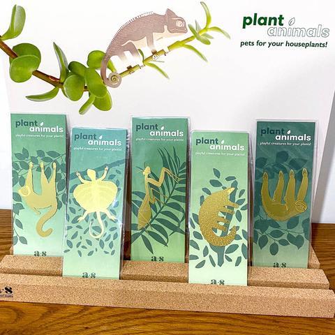 Plant Animals - Praying Mantis