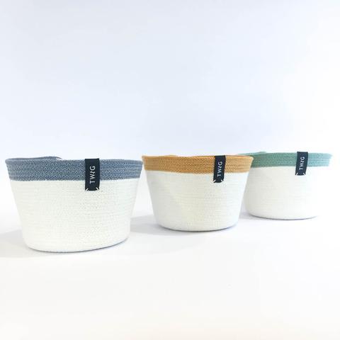 Twig Plants and Pots - Cream Bundle concrete indoor plant pot