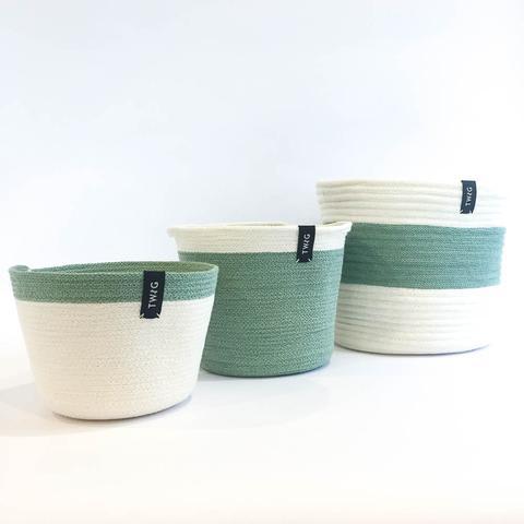 Twig Plants and Pots - Sage Bundle concrete indoor plant pot