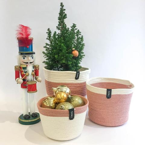 Twig Plants and Pots - Pink Bundle concrete indoor plant pot