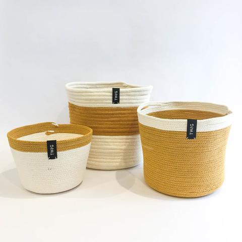 Twig Plants and Pots - Mustard Bundle concrete indoor plant pot