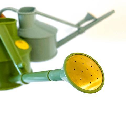 The Langley Sprinkler - Hawes Watering Can