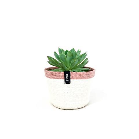 Cotton Pot - Minnie