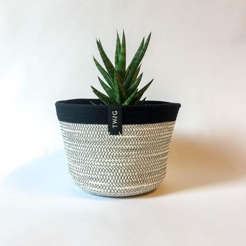 Twig Plants and Pots - Mono concrete indoor plant pot