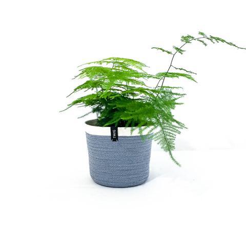 Cotton Pot - Steel