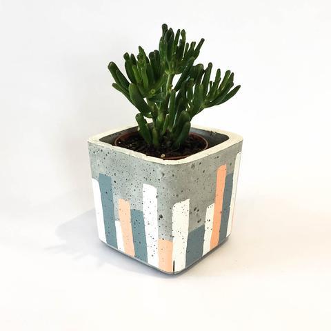 Twig Plants and Pots - Urban Sunset concrete indoor plant pot