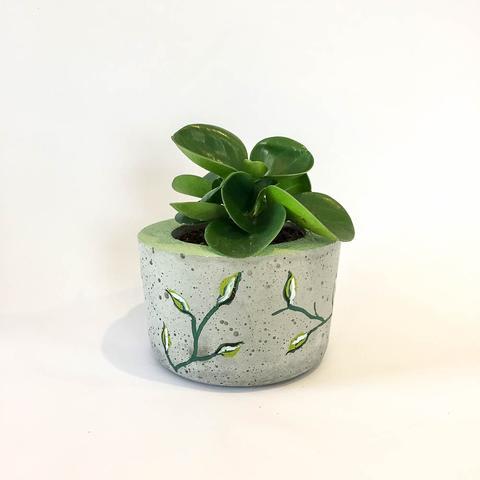 Twig Plants and Pots - Wild concrete indoor plant pot
