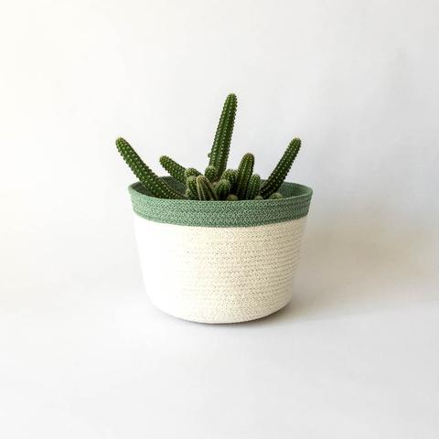 Twig Plants and Pots - Willow concrete indoor plant pot