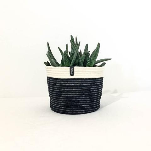 Twig Plants and Pots - Blackbird concrete indoor plant pot