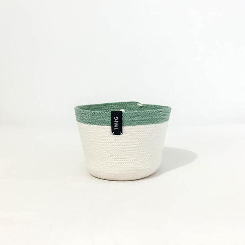 Twig Plants and Pots - Willow concrete indoor plant pot
