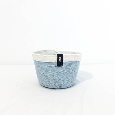 Twig Plants and Pots - Aqua concrete indoor plant pot