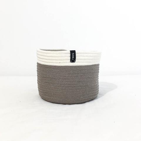 Twig Plants and Pots - Cappuccino concrete indoor plant pot