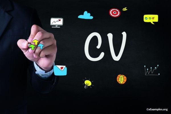 What is a Curriculum Vitae?