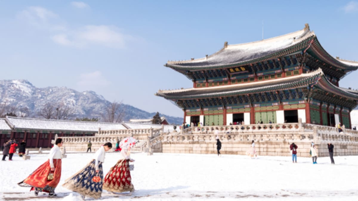 Korea (Winter) With Tripfez
