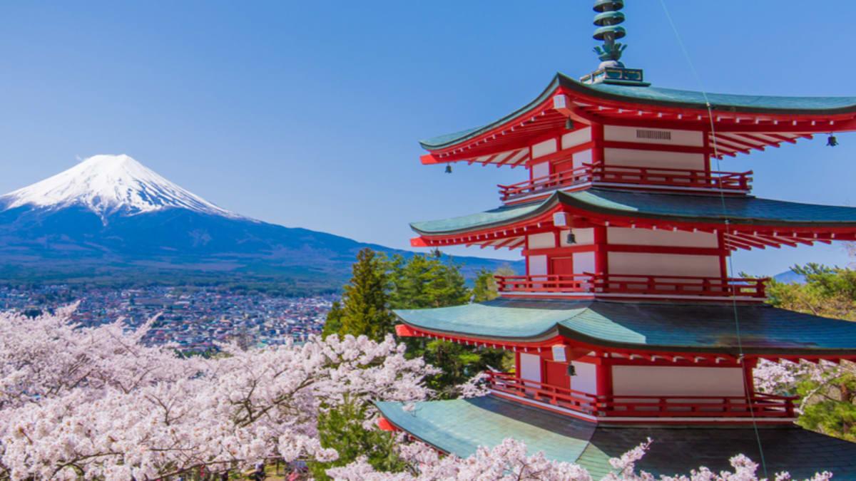 Tokyo & Mount Fuji (Autumn) With Tripfez