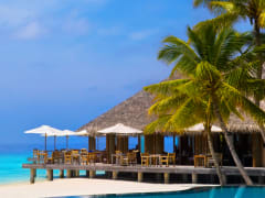 Tripfez TravelKuramathi Island Resort  package