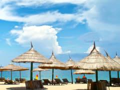 Tripfez TravelNha Trang Beach Resort X Dalat Flower City (Buy 3 Free 1) package
