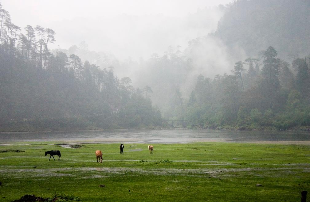 Parque Nacional Lagunas de Zempoala