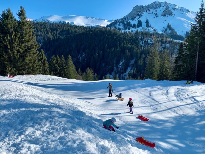 My wife and children sledding in the snow. In the background, we see the forest and the mountain of Teysachaux with a magnificent blue sky.
