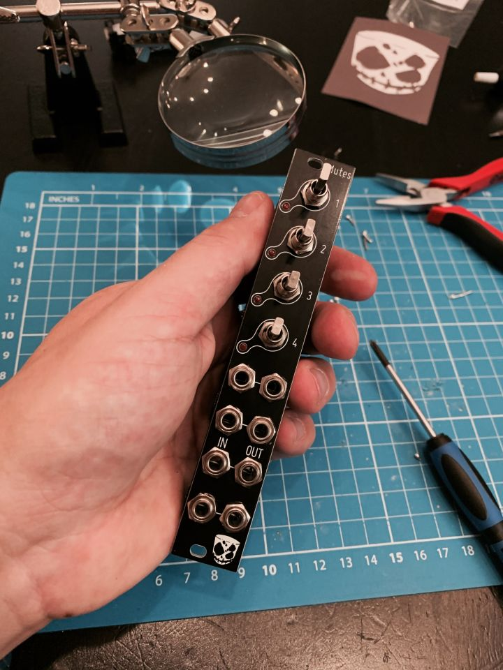 The mute module in my hands. It's a four channels mutes module.