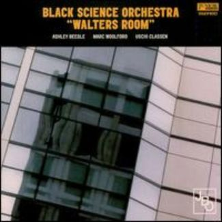 Black Science Orchestra pictures