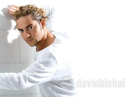 David Bisbal pictures