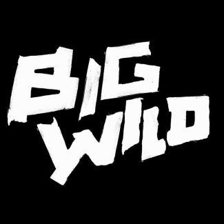 Big Wild pictures