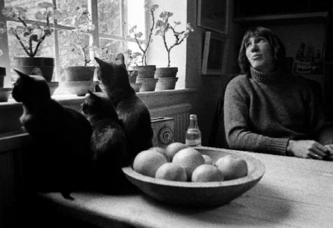 Roger Waters pictures