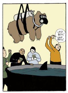 Bear vs. Shark pictures