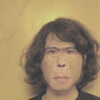 Ape School pictures