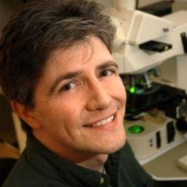 Dr. Matthew Breen Headshot