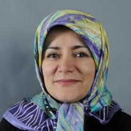 Fatemeh Haghighatjoo - Speaker...