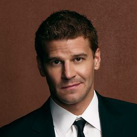 David Boreanaz Headshot