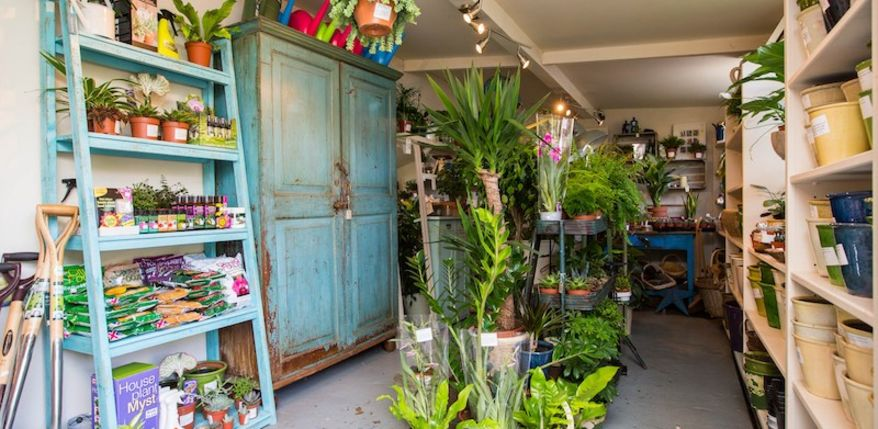 Wide-angle of a shop interior filled with house plants, soil, sundries etc.