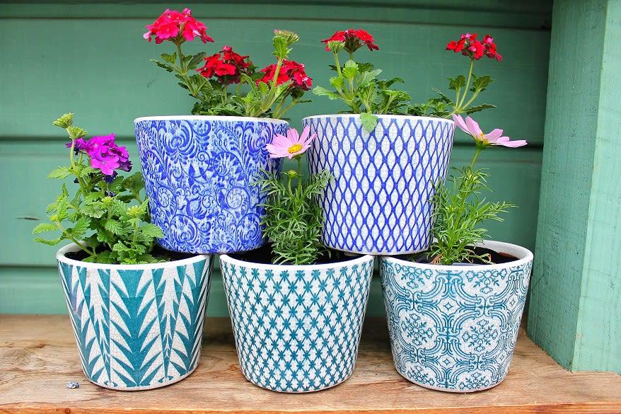 Paisley Pots