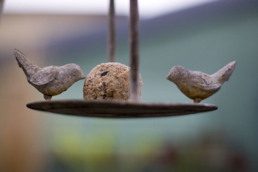 A fat ball sits on a wrought iron bird feeder