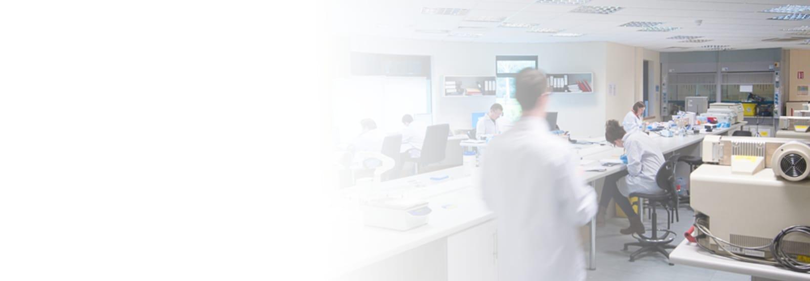 Bioanalysis / Pharmacokinetics Overview