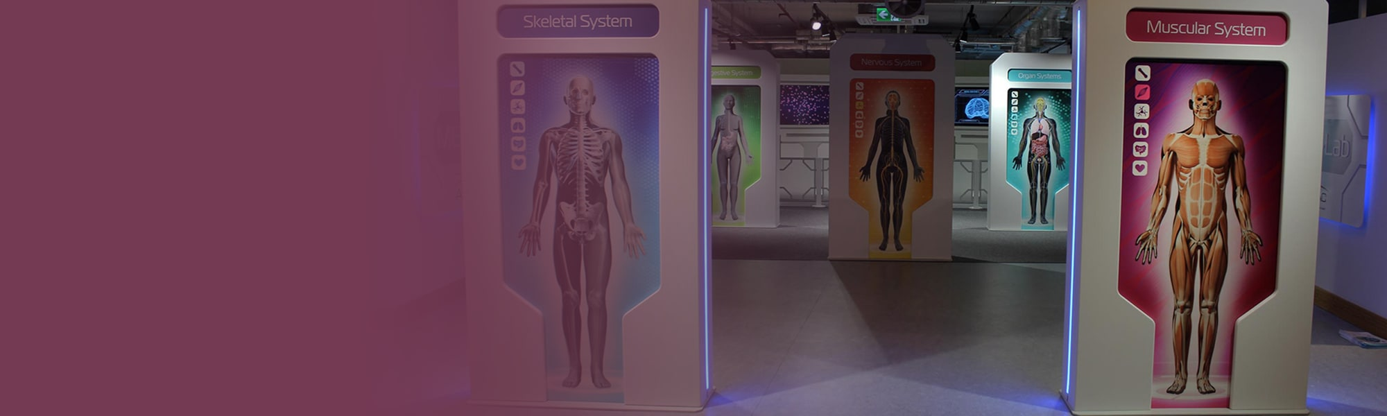 Step into MED-Lab and explore the medical marvel that is the human body!