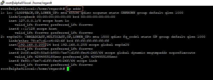 Get Linux IP Address