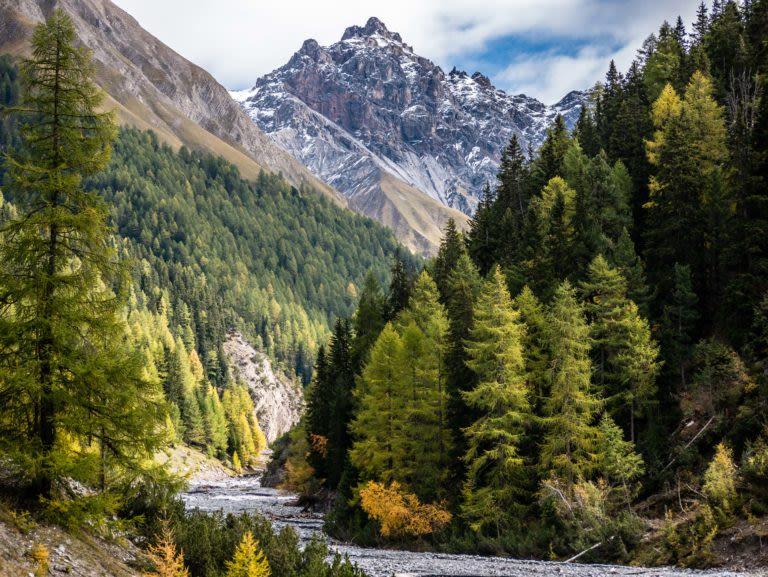 Herbst im Val Trupchun: jetzt wird's Wild!
