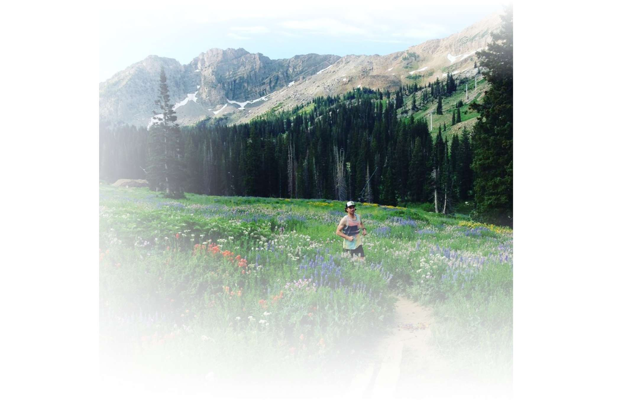 A runner in the wildflowers on a sunny summer day at Alta Ski Area
