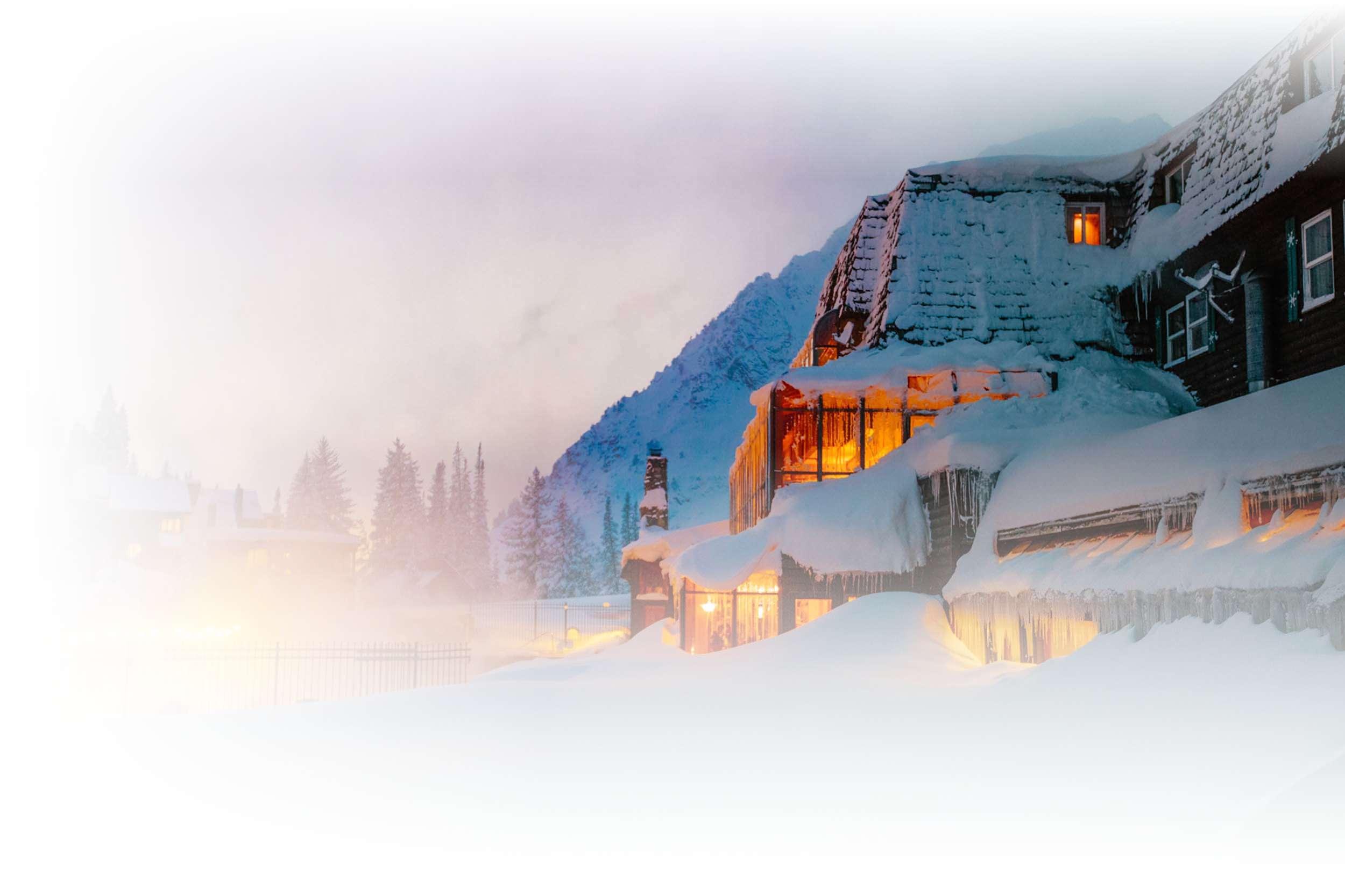 Alta Peruvian in Winter