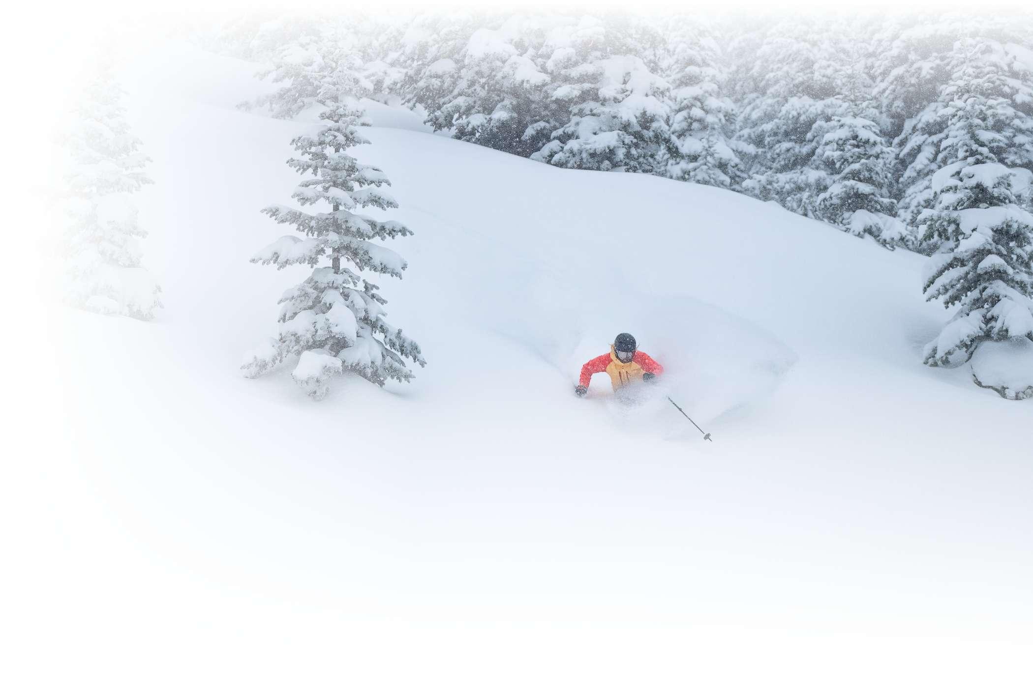 Powder skiing at Alta Ski Area